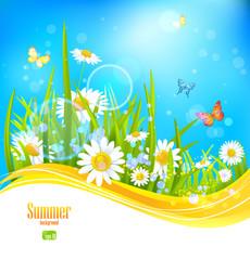 Zelfklevend Fotobehang Vlinders Sunny bright background with blue sky