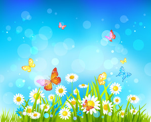 Keuken foto achterwand Vlinders Sunny day background with flowers and butterflies