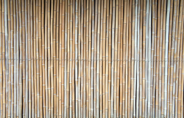 Japanese bamboo texture