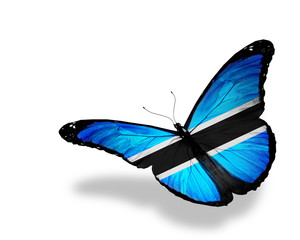 Botswana flag butterfly flying, isolated on white background