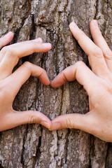 Herz aus 2 Händen auf der Rinde eines Baumes