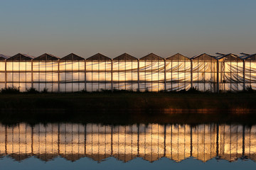 Front view of a greenhouse during sunset