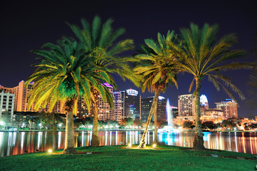 Fototapete - Orlando night scene