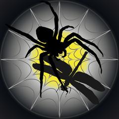 Libelle im Spinnennetz-Silhouette