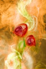 smoke flower on  fire background