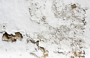 Distressed Plaster wall 5