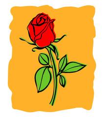 Red rose vector illustration. Hand drawn