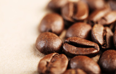 Coffee Bean. closeup