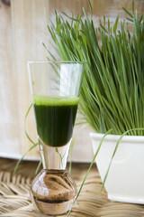 shot of wheatgrass juice