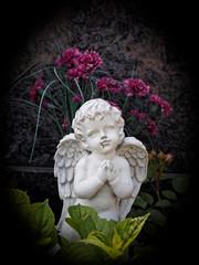 Engel vor Blumen