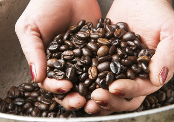 Woman Hands Holding Coffee Beans