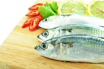 Close up fresh raw mackerel