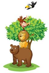 Foto auf Leinwand Waldtiere animals under tree