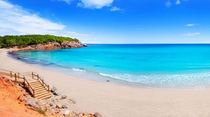 Fototapete - Cala Nova beach in Ibiza island with turquoise water