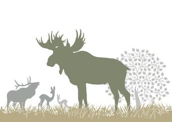 Fototapete - Elch und Waldtiere