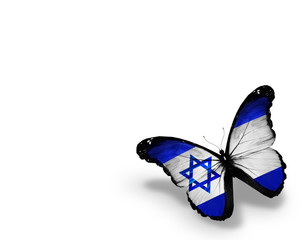 Israeli flag butterfly, isolated on white background