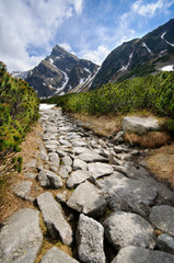 Fototapete - Polish Tatra mountains