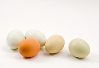 Fresh eggs on isolated white