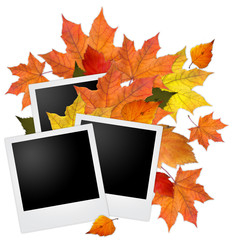 Blank photo frame with autumn leaves on white