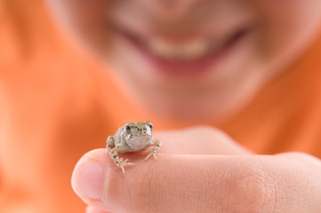 Cute boy with a little frog isolated on white background