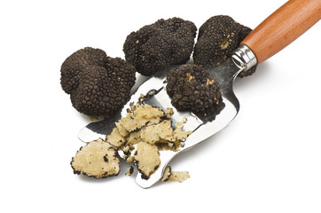 Fototapeta truffles  obraz