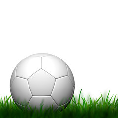 3D Football  in green grass on white background