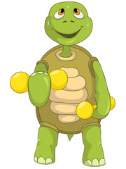 Funny Turtle. Gym.