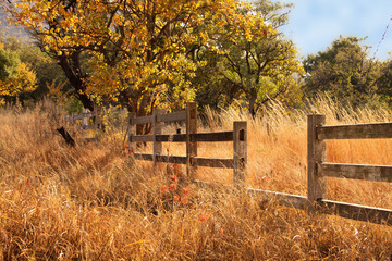 Old Wooden Farm Fence