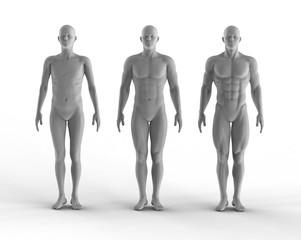 3d render set of portrait bodybuilder