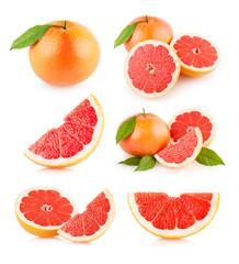 set of 6 grapefruit images