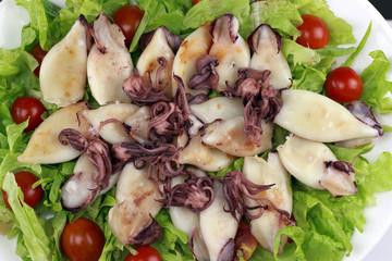 calamari close up