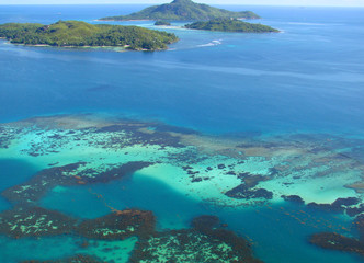 Reef from the top