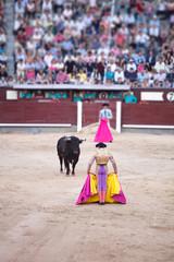 Corrida de toros Plaza Las Ventas de Madrid