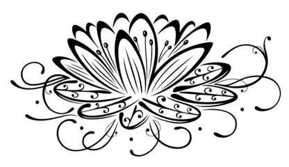 Lotus, Lotusblüte, Yoga, Wellness, Glück, Meditation