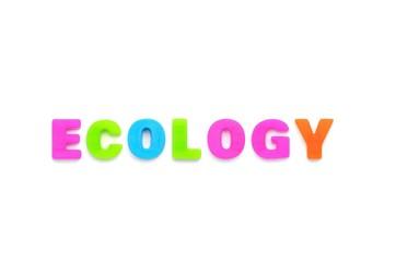 アルファベット ECOLOGY