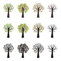 Vier Jahreszeiten ~ Frühling/Sommer/Herbst/Winter - Megaset