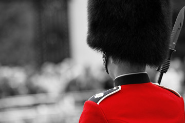 Foto op Canvas Rood, zwart, wit Queen's soldier at Trooping the color, 2012