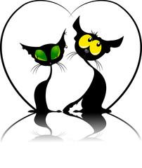 cat's heart