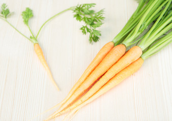 Bunch of young carrot