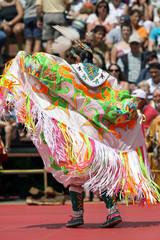 Fotorolgordijn Zuid-Amerika land Pow-wow