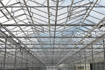 View at the roof of a greenhouse