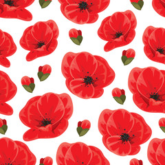 Seamless poppy pattern