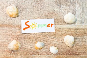 Sommer und Muscheln