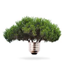 energía ecológica, concepto