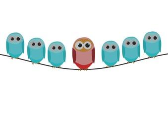 Blue bird series, a row of bird with red bird