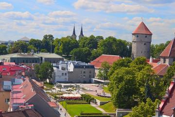 Small park in old Tallinn
