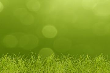 Grass on