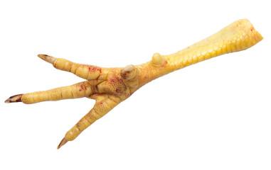 chicken leg on white background