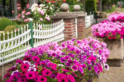 Blumen Im Vorgarten Stockfotos Und Lizenzfreie Bilder Auf Fotolia