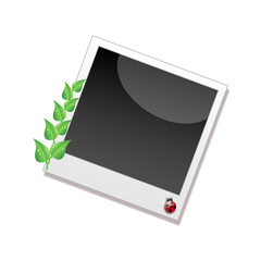 Polaroid bio